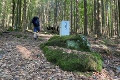 expedice-hranice-cr-sumavske-hrebeny-106
