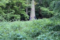 expedice-hranice-cr-sumavske-hrebeny-113