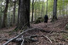 expedice-hranice-cr-sumavske-hrebeny-116
