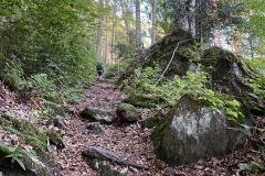 expedice-hranice-cr-sumavske-hrebeny-118