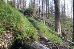 expedice-hranice-cr-sumavske-hrebeny-120