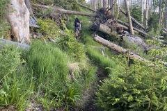 expedice-hranice-cr-sumavske-hrebeny-123