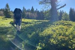 expedice-hranice-cr-sumavske-hrebeny-130