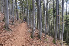 expedice-hranice-cr-sumavske-hrebeny-143