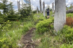 expedice-hranice-cr-sumavske-hrebeny-145