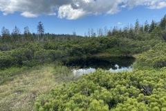 expedice-hranice-cr-sumavske-hrebeny-147