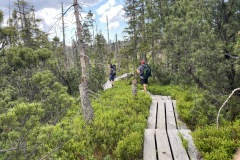 expedice-hranice-cr-sumavske-hrebeny-148