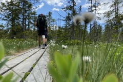 expedice-hranice-cr-sumavske-hrebeny-150