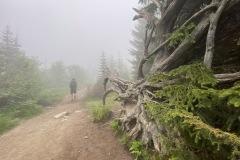 expedice-hranice-cr-sumavske-hrebeny-161