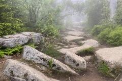 expedice-hranice-cr-sumavske-hrebeny-162