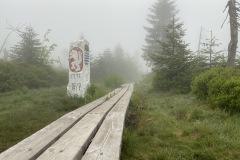 expedice-hranice-cr-sumavske-hrebeny-166