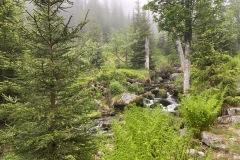 expedice-hranice-cr-sumavske-hrebeny-168