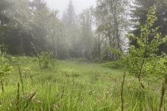 expedice-hranice-cr-sumavske-hrebeny-173