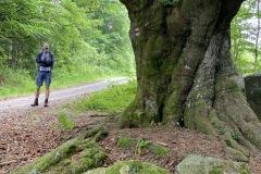 expedice-hranice-cr-sumavske-hrebeny-179