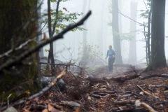 goldsteig-trail-wanderweg-dsc_4826
