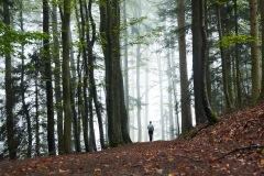 goldsteig-trail-wanderweg-dsc_4842x