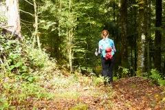 goldsteig-trail-wanderweg-dsc_4858