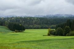 goldsteig-trail-wanderweg-dsc_4867