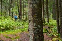 goldsteig-trail-wanderweg-dsc_4876