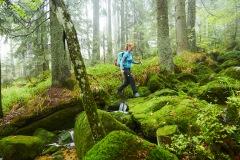 goldsteig-trail-wanderweg-dsc_4900