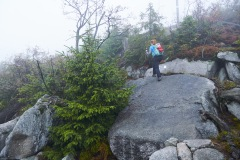 goldsteig-trail-wanderweg-dsc_4939
