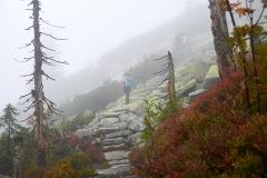goldsteig-trail-wanderweg-dsc_4954