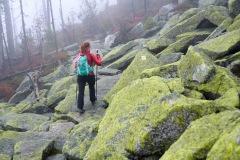 goldsteig-trail-wanderweg-dsc_4982