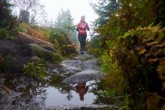 goldsteig-trail-wanderweg-dsc_5010