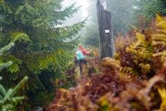 goldsteig-trail-wanderweg-dsc_5017