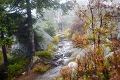 goldsteig-trail-wanderweg-dsc_5022