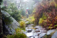 goldsteig-trail-wanderweg-dsc_5027