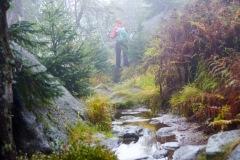 goldsteig-trail-wanderweg-dsc_5027x