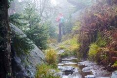 goldsteig-trail-wanderweg-dsc_5028