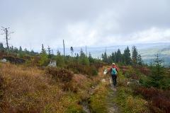 goldsteig-trail-wanderweg-dsc_5057