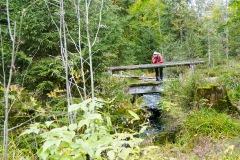 goldsteig-trail-wanderweg-dsc_5059