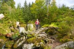 goldsteig-trail-wanderweg-dsc_5061