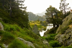 DSC_2425 Lac Long