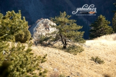 yabasta-climbing-briancon-france-dsc_4284