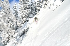 freeride-powder-gosau-200120-yabasta_cz_5378