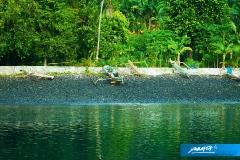 indonesia-2010--072