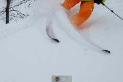krippenstein-yabasta-freeride-ski-snowboard-pictures-photos-dsc_6171